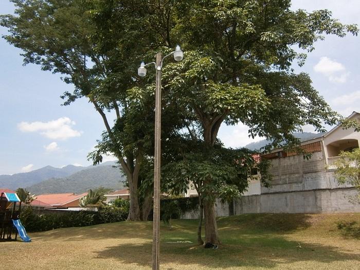 Mr. Fix It realizó la instalación de dos lámparas tipo canasta y un poste de madera en un área verde de San Pedro Sula.