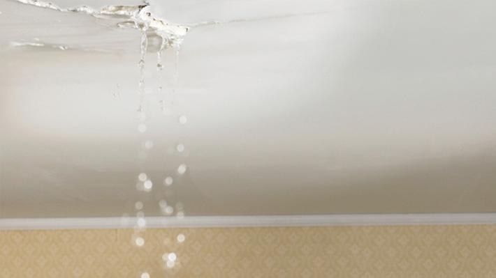 ¿Ya solucionó el problema de goteras en el techo?